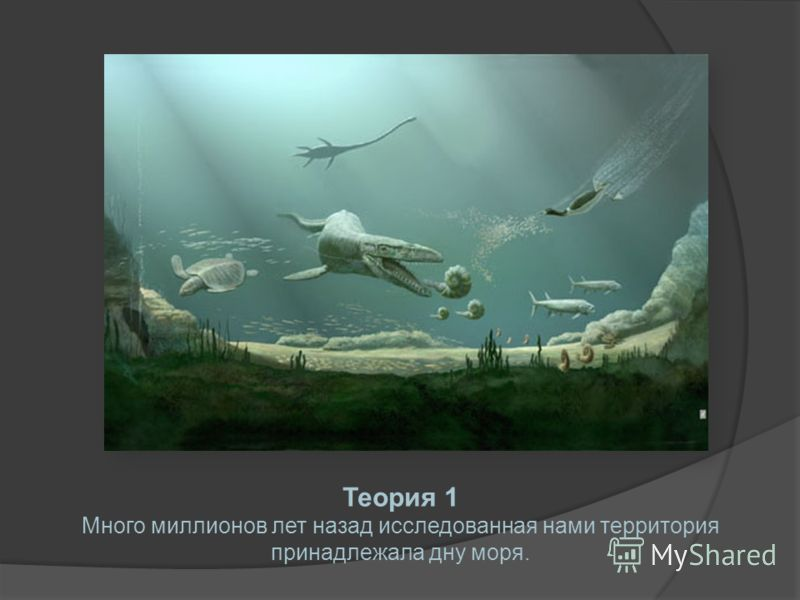 Теория 1 Много миллионов лет назад исследованная нами территория принадлежала дну моря.