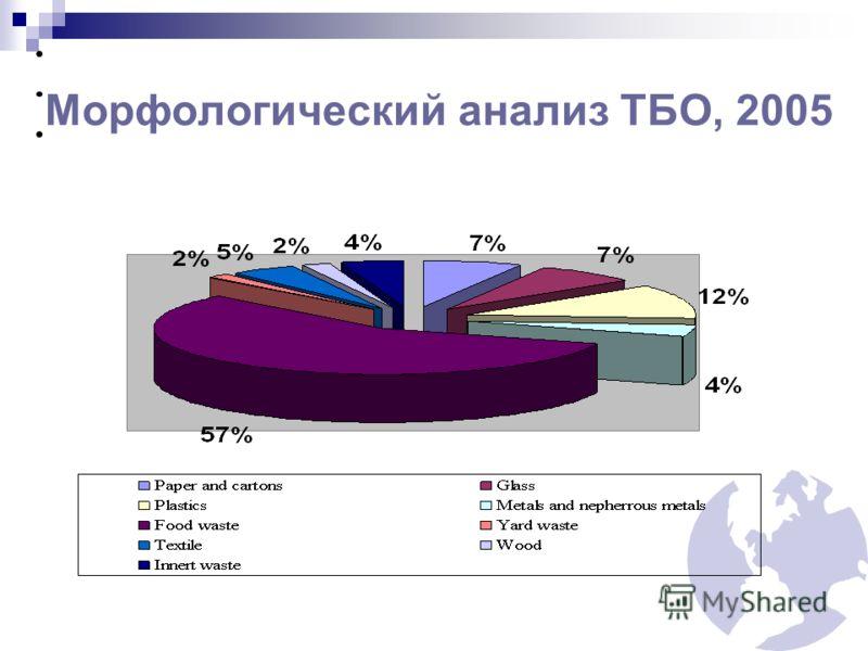 Морфологический анализ ТБО, 2005