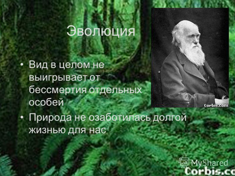 Эволюция Вид в целом не выигрывает от бессмертия отдельных особей Природа не озаботилась долгой жизнью для нас
