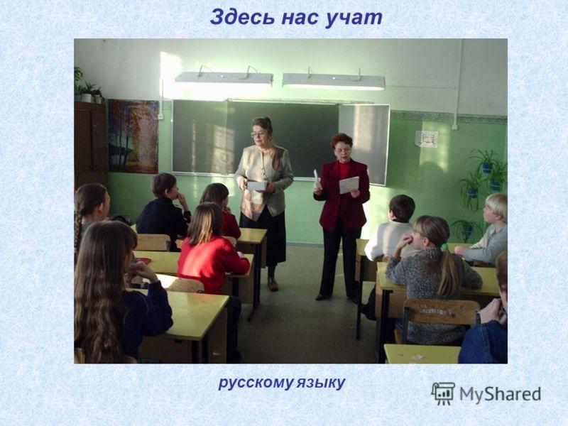 Здесь нас учат русскому языку