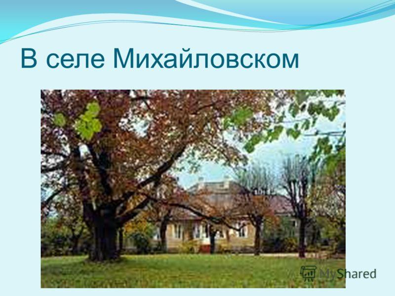 В селе Михайловском