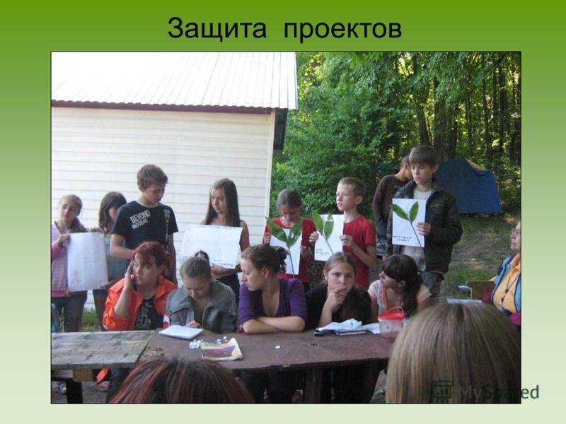 Союз юных экологов саратовской