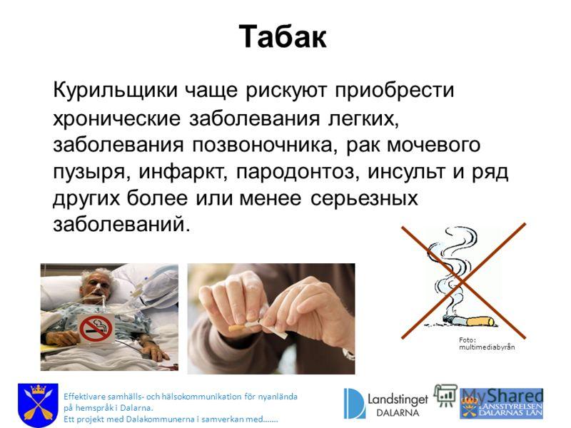 Табак Курильщики чаще рискуют приобрести хронические заболевания легких, заболевания позвоночника, рак мочевого пузыря, инфаркт, пародонтоз, инсульт и ряд других более или менее серьезных заболеваний. Foto: multimediabyrån Effektivare samhälls- och h