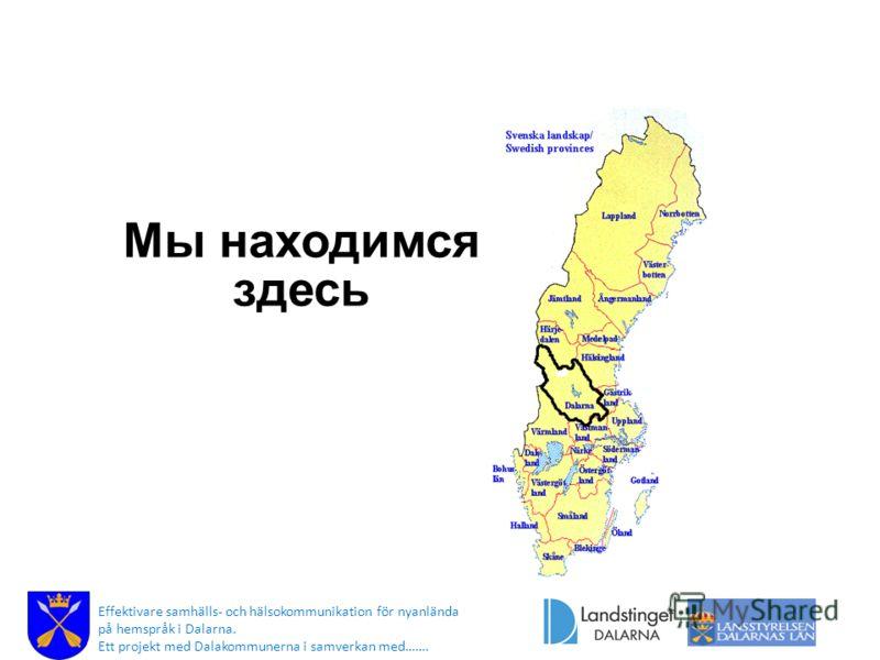 Мы находимся здесь Effektivare samhälls- och hälsokommunikation för nyanlända på hemspråk i Dalarna. Ett projekt med Dalakommunerna i samverkan med…….