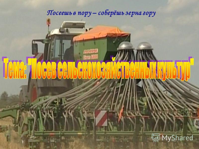Посеешь в пору – соберёшь зерна гору