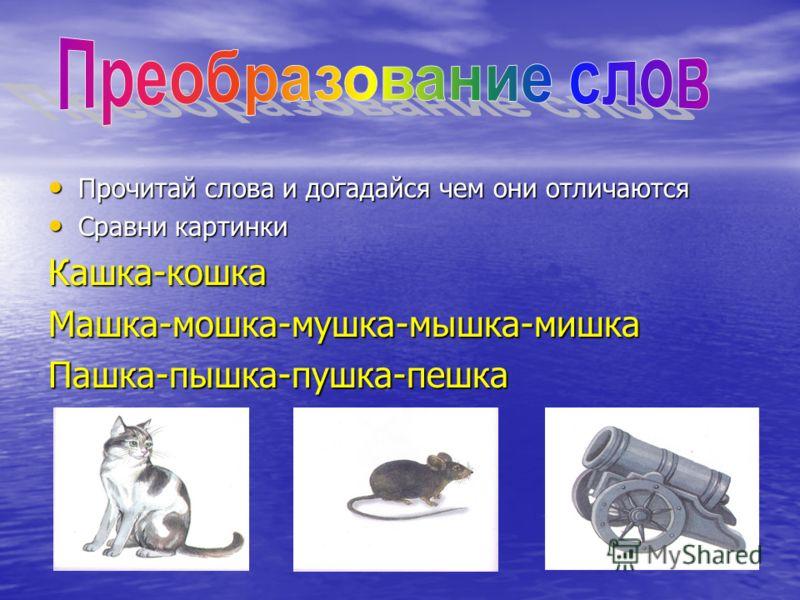 Прочитай слова и догадайся чем они отличаются Прочитай слова и догадайся чем они отличаются Сравни картинки Сравни картинкиКашка-кошкаМашка-мошка-мушка-мышка-мишкаПашка-пышка-пушка-пешка