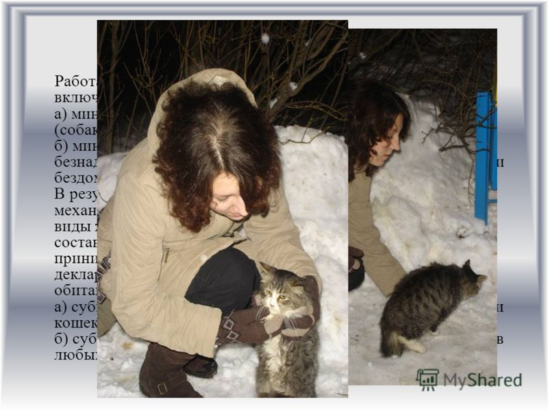 II этап: Работа на уровне минимизации истребления животных включает следующие направления: а) минимизация истребления домашними животными (собаками и кошками) диких животных; б) минимизация истребления внутри бездомных (бродячих, безнадзорных) животн