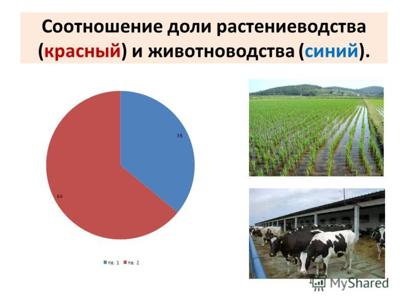 Соотношение доли растениеводства (красный) и животноводства (синий).
