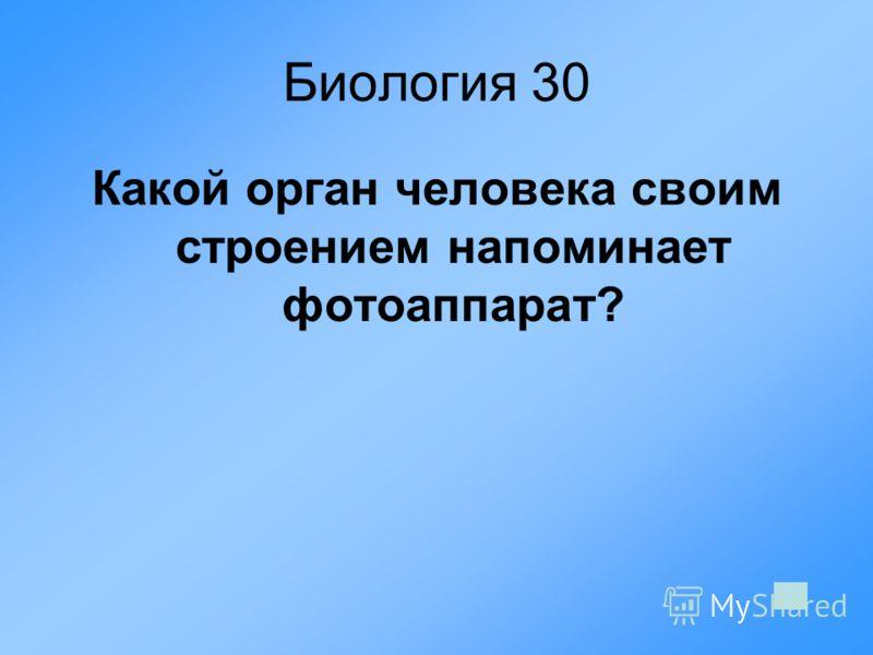 Биология 30 Какой орган человека своим строением напоминает фотоаппарат?