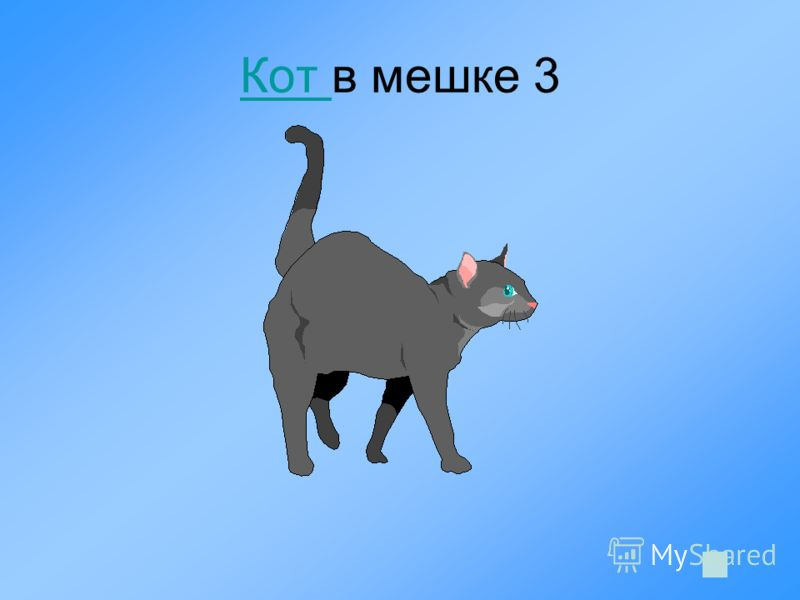 Кот Кот в мешке 3