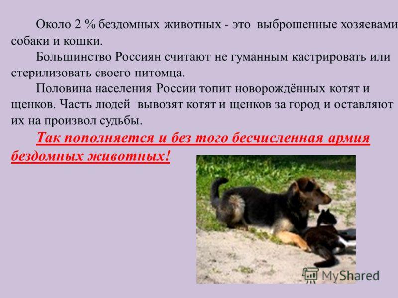 Около 2 % бездомных животных - это выброшенные хозяевами собаки и кошки. Большинство Россиян считают не гуманным кастрировать или стерилизовать своего питомца. Половина населения России топит новорождённых котят и щенков. Часть людей вывозят котят и