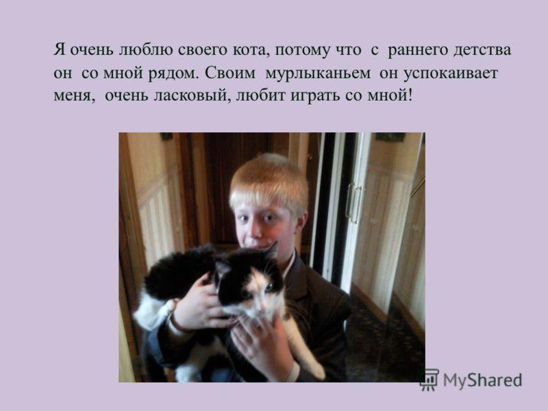 Я очень люблю своего кота, потому что с раннего детства он со мной рядом. Своим мурлыканьем он успокаивает меня, очень ласковый, любит играть со мной!
