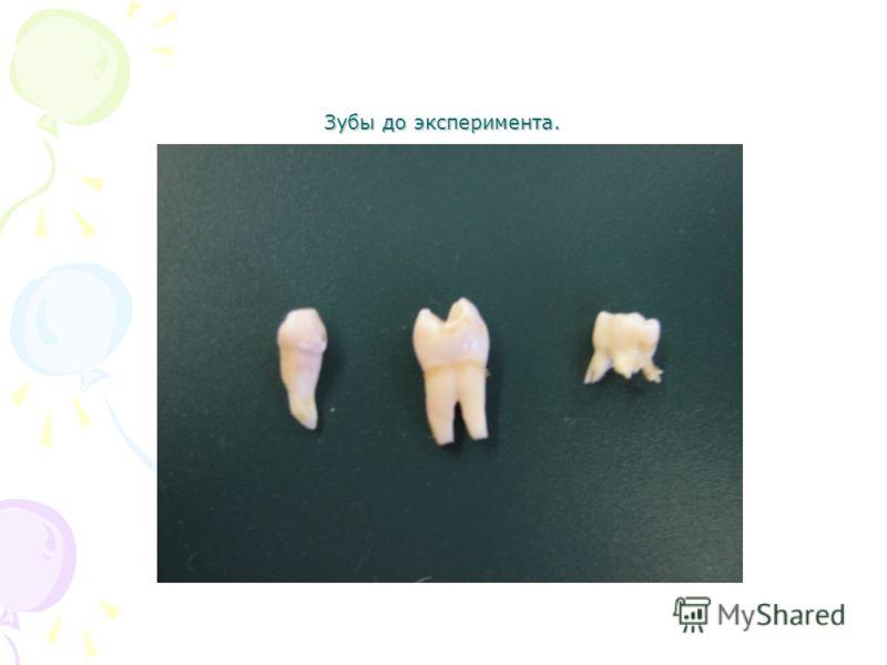 Зубы до эксперимента.