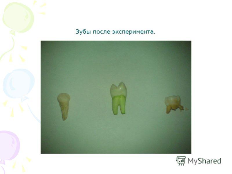 Зубы после эксперимента.