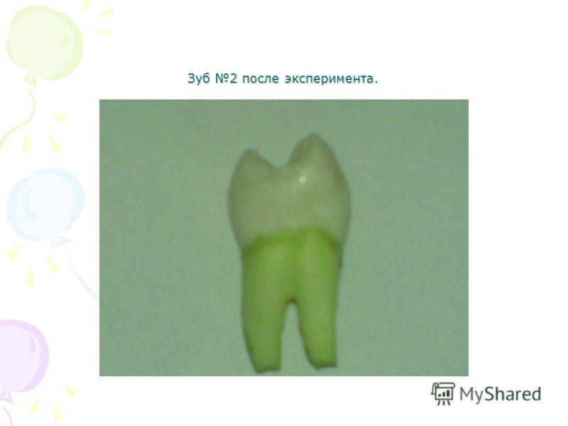 Зуб 2 после эксперимента.