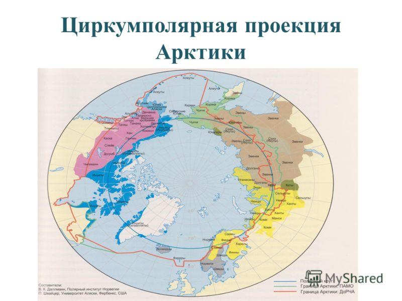 Циркумполярная проекция Арктики