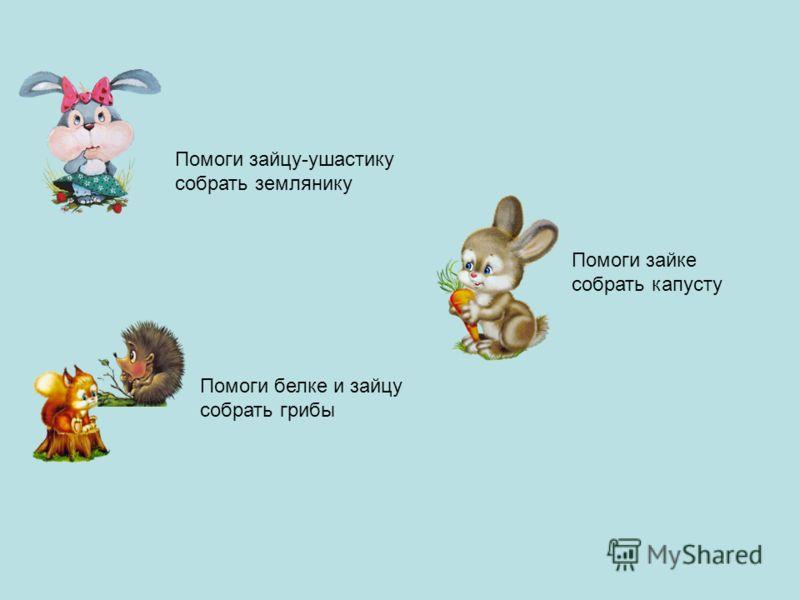 Помоги зайцу-ушастику собрать землянику Помоги белке и зайцу собрать грибы Помоги зайке собрать капусту