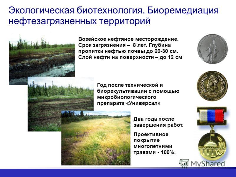 Экологическая биотехнология. Биоремедиация нефтезагрязненных территорий Два года после завершения работ. Проективное покрытие многолетними травами - 100%. Год после технической и биорекультивации с помощью микробиологического препарата «Универсал» Во