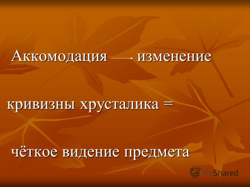 Аккомодация изменение Аккомодация изменение кривизны хрусталика = кривизны хрусталика = чёткое видение предмета чёткое видение предмета