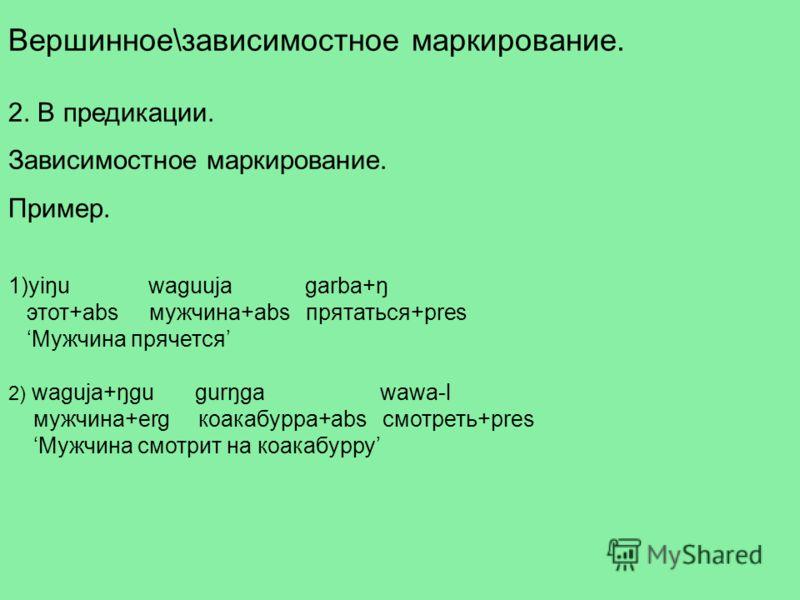 Вершинное\зависимостное маркирование. 2. В предикации. Зависимостное маркирование. Пример. 1)yiŋu waguuja garba+ŋ этот+abs мужчина+abs прятаться+pres Мужчина прячется 2) waguja+ŋgu gurŋga wawa-l мужчина+erg коакабурра+abs смотреть+pres Мужчина смотри