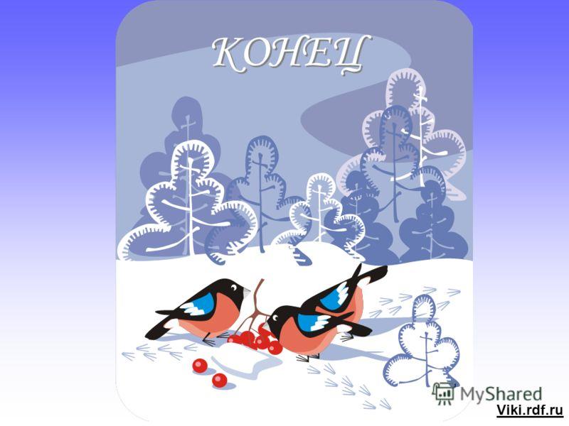 Зимние конверты kids comfort купить