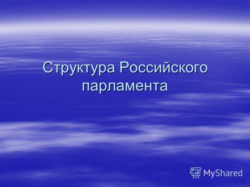 Структура Российского парламента