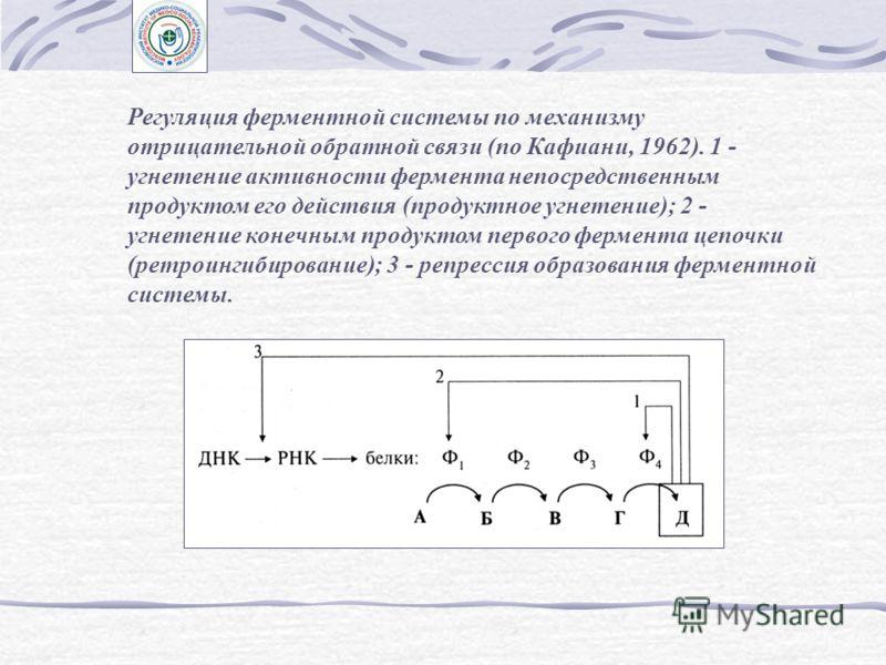 Общие принципы регулирования в живых системах Схема возможных взаимодействий в организме, а также живой системы с окружающей средой по Вейссу