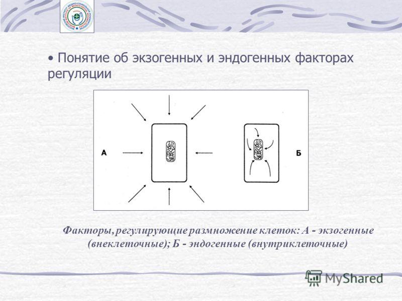 Регуляция ферментной системы по механизму отрицательной обратной связи (по Кафиани, 1962). 1 - угнетение активности фермента непосредственным продуктом его действия (продуктное угнетение); 2 - угнетение конечным продуктом первого фермента цепочки (ре