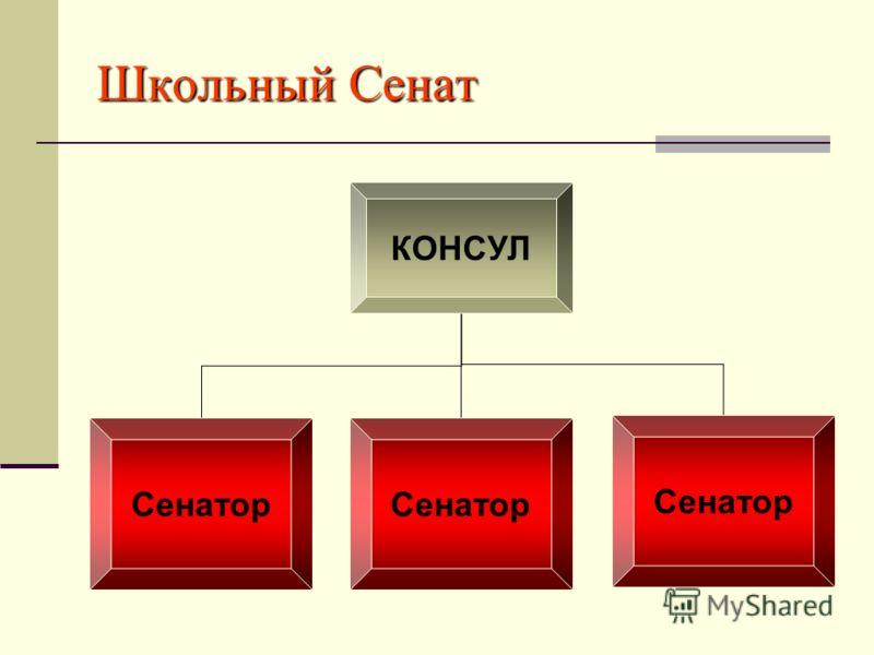 Школьный Сенат КОНСУЛ Сенатор
