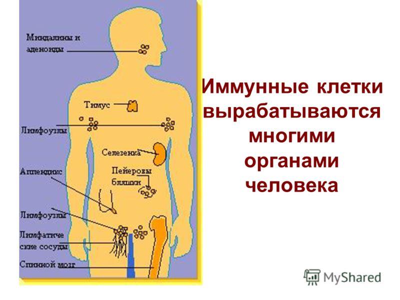 инструкции по составлению планов ликвидации заправочной станции:
