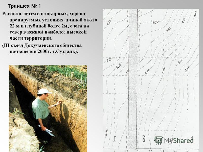 Траншея 1 Располагается в плакорных, хорошо дренируемых условиях длиной около 22 м и глубиной более 2м, с юга на север в южной наиболее высокой части территории. (III съезд Докучаевского общества почвоведов 2000г. г.Суздаль).
