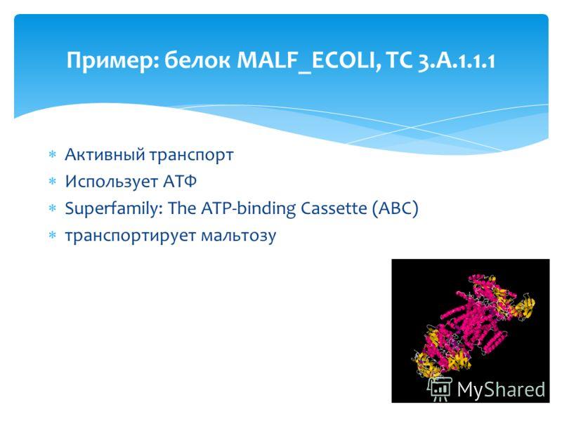 Активный транспорт Использует АТФ Superfamily: The ATP-binding Cassette (ABC) транспортирует мальтозу Пример: белок MALF_ECOLI, TC 3.A.1.1.1