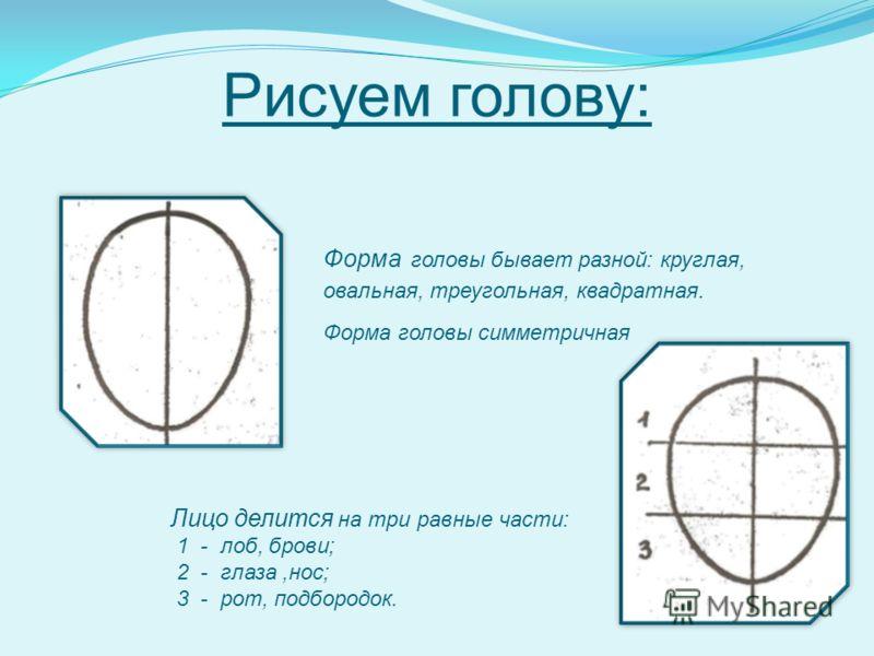 Рисуем голову: Форма головы бывает разной: круглая, овальная, треугольная, квадратная. Форма головы симметричная Лицо делится на три равные части: 1 - лоб, брови; 2 - глаза,нос; 3 - рот, подбородок.