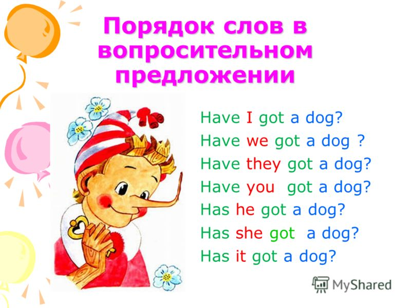 Порядок слов в вопросительном предложении Have I got a dog? Have we got a dog ? Have they got a dog? Have you got a dog? Has he got a dog? Has she got a dog? Has it got a dog?