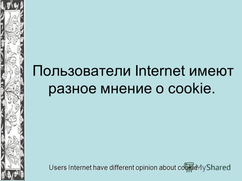 Пользователи Internet имеют разное мнение о cookie. Users Internet have different opinion about cookie.
