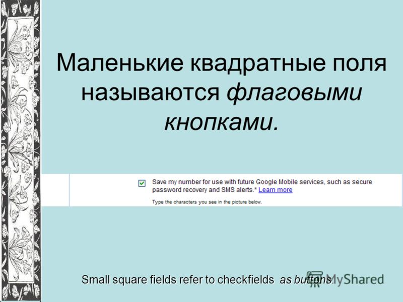 Маленькие квадратные поля называются флаговыми кнопками. Small square fields refer to checkfields as buttons.