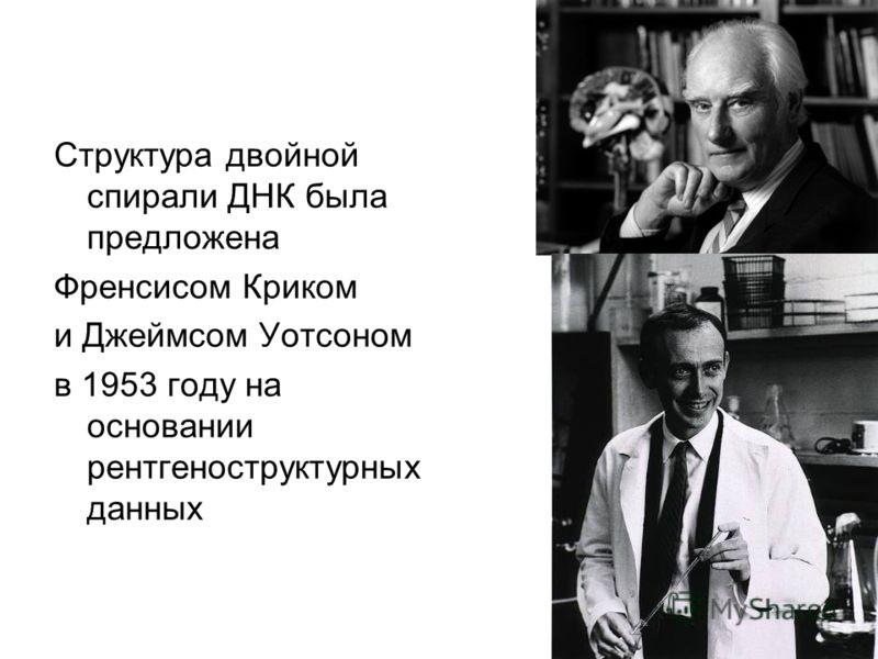 Структура двойной спирали ДНК была предложена Френсисом Криком и Джеймсом Уотсоном в 1953 году на основании рентгеноструктурных данных
