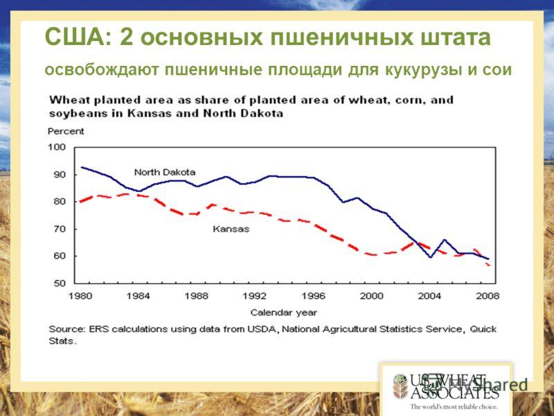 США: 2 основных пшеничных штата освобождают пшеничные площади для кукурузы и сои