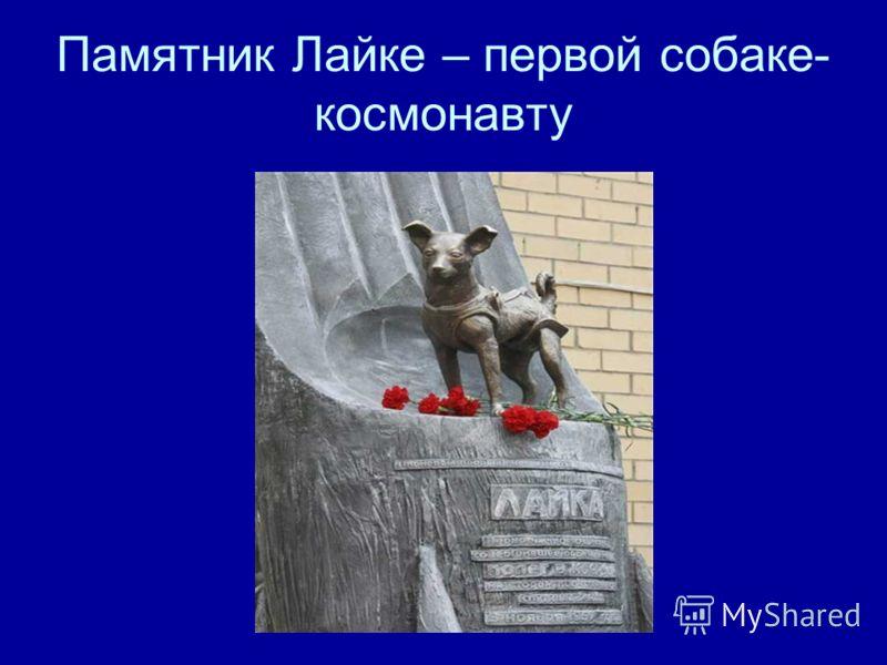 Памятник Лайке – первой собаке- космонавту