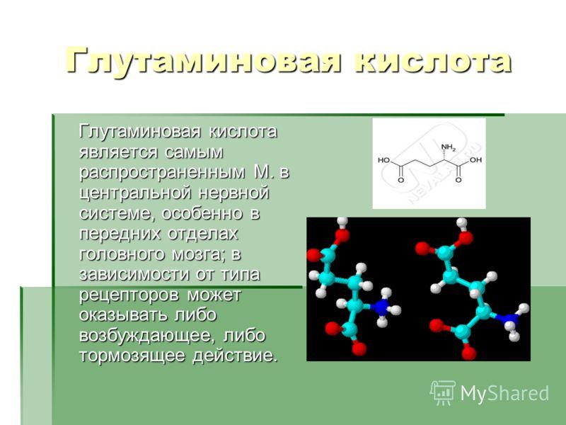 Глутаминовая кислота Глутаминовая кислота является самым распространенным М. в центральной нервной системе, особенно в передних отделах головного мозга; в зависимости от типа рецепторов может оказывать либо возбуждающее, либо тормозящее действие. Глу