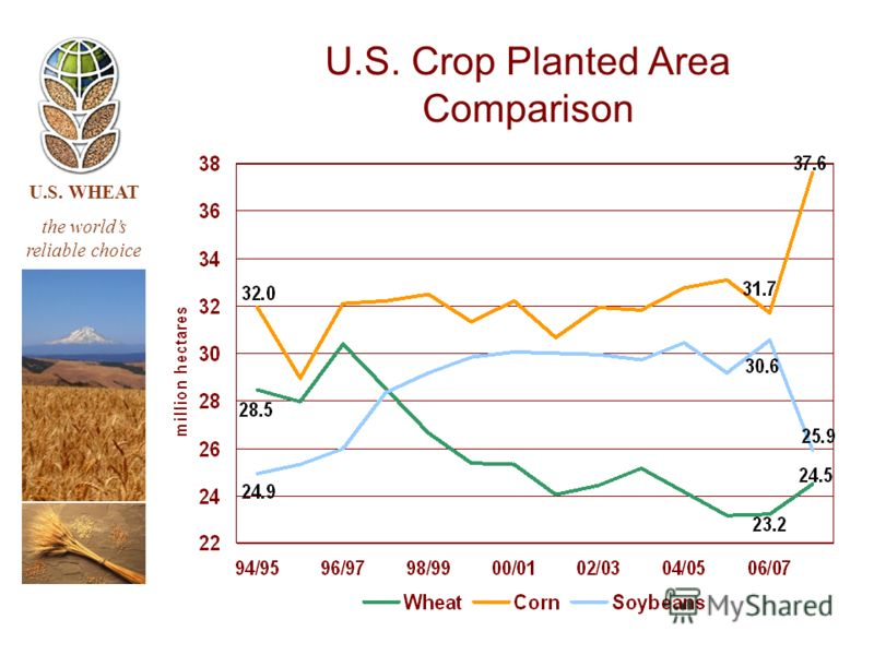 U.S. WHEAT the worlds reliable choice U.S. Crop Planted Area Comparison