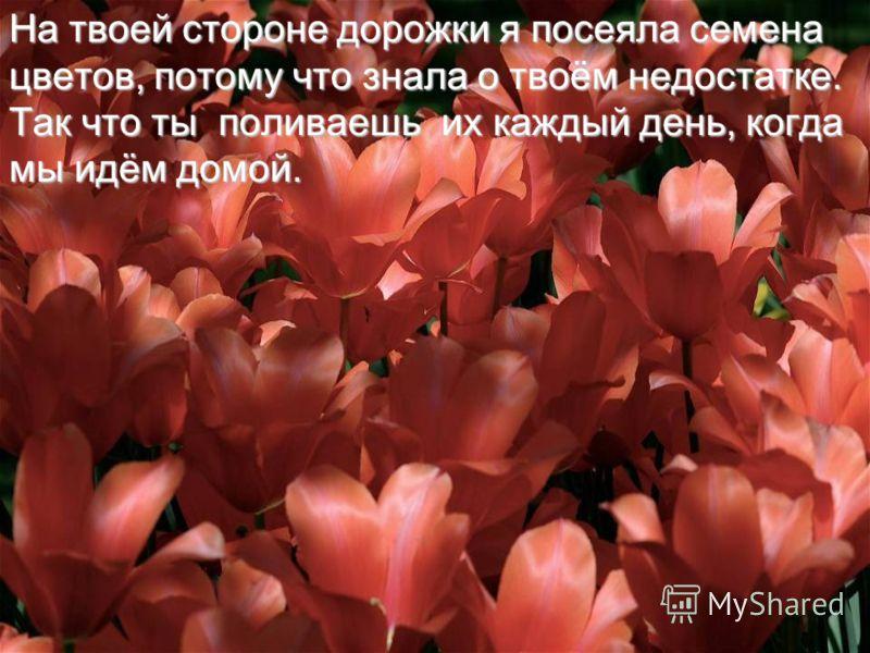 Старая женщина усмехнулась.  Ты заметил, что на твоей стороне дорожки растут цветы, а на стороне другого кувшина - нет ?