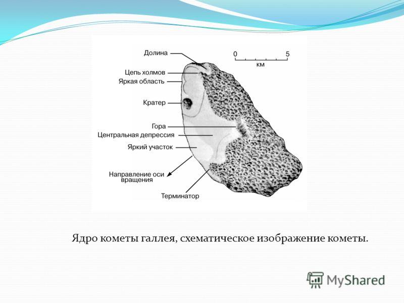 Ядро кометы галлея, схематическое изображение кометы.