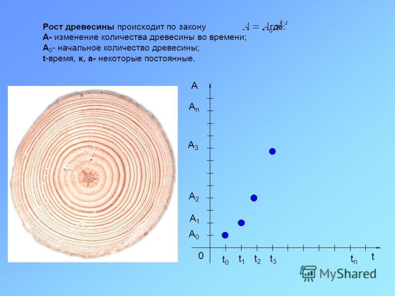 Рост древесины происходит по закону, где: A- изменение количества древесины во времени; A 0 - начальное количество древесины; t-время, к, а- некоторые постоянные. t 0 t0t0 t1t1 t2t2 t3t3 tntn А A0A0 A1A1 A2A2 A3A3 AnAn