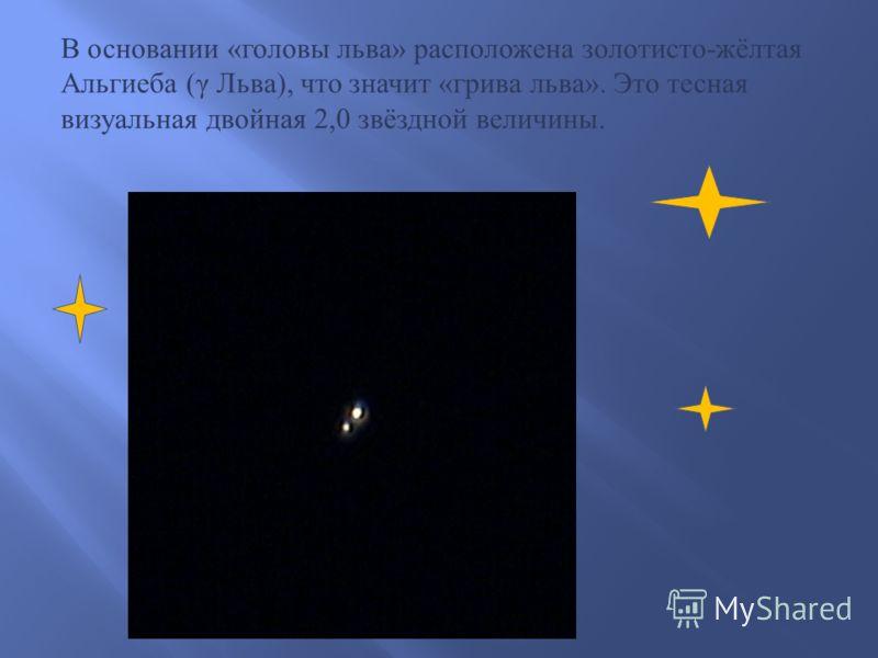 В задней части фигуры зверя находится звезда Денебола ( β Льва ), в переводе с арабского « хвост льва ». Она имеет блеск 2,14 звёздной величины и удалена всего на 43 св. года.