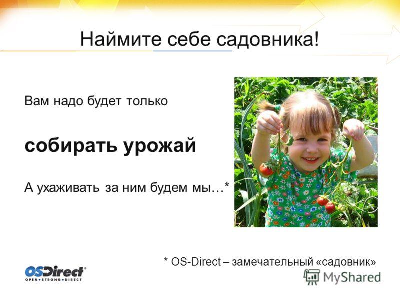 Наймите себе садовника! Вам надо будет только собирать урожай А ухаживать за ним будем мы…* * OS-Direct – замечательный «садовник»