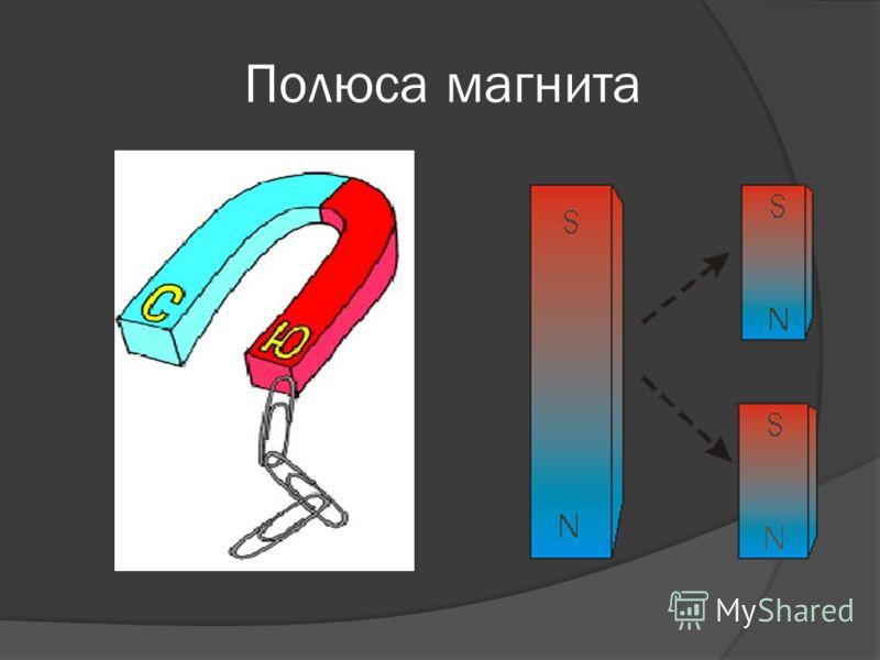 Полюса магнита