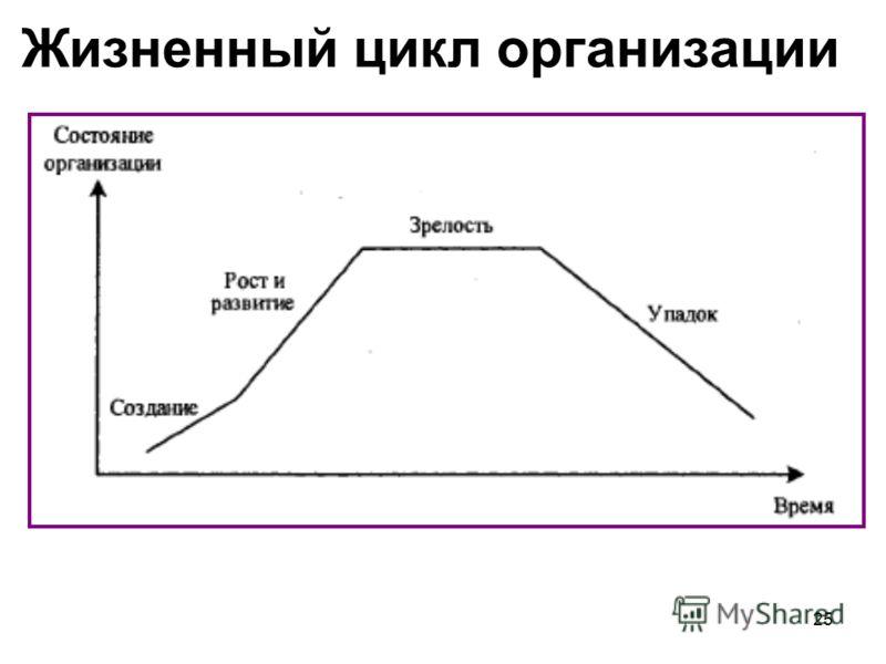 25 Жизненный цикл организации