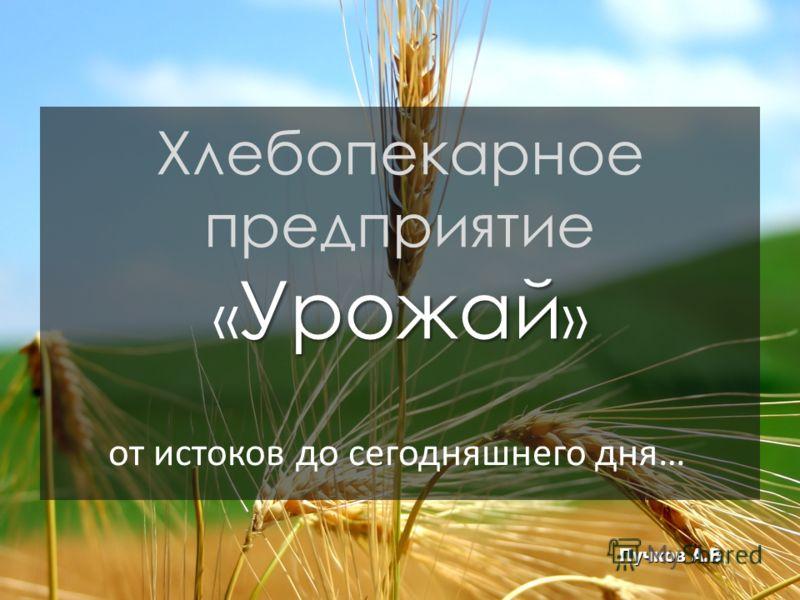 Урожай Хлебопекарное предприятие « Урожай » Пучков А.В от истоков до сегодняшнего дня…