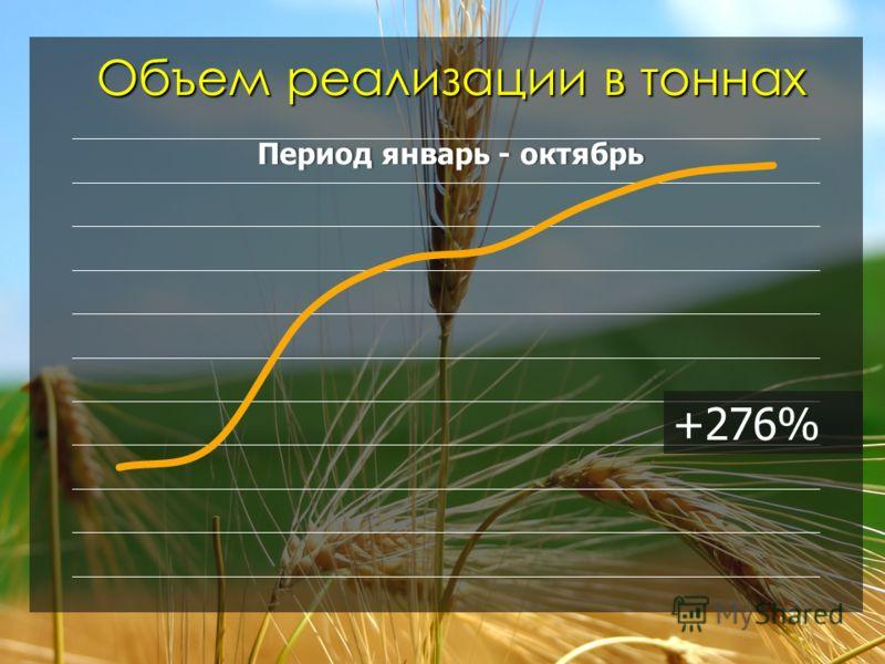Объем реализации в тоннах +276%